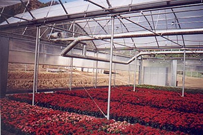 Radiant Heaters | Heater systems | Commercial Greenhouse Equipment