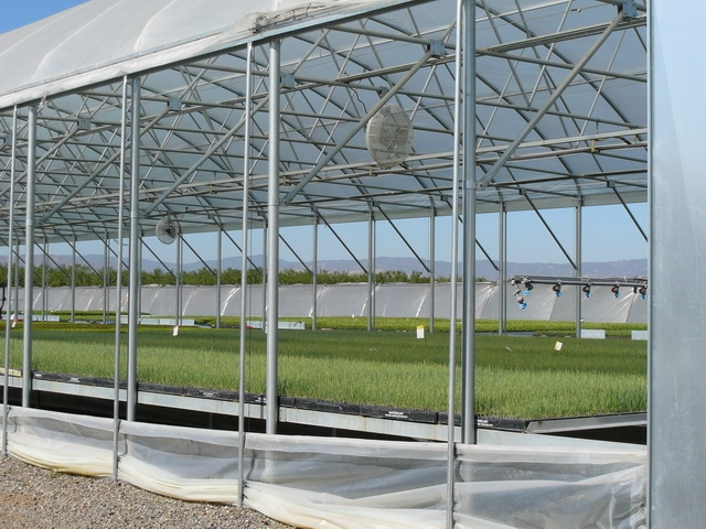 Drop Wall | Commercial Greenhouse Accessories