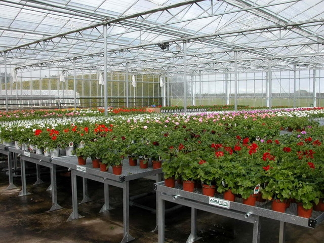 Benches | Commercial Greenhouse Accessories