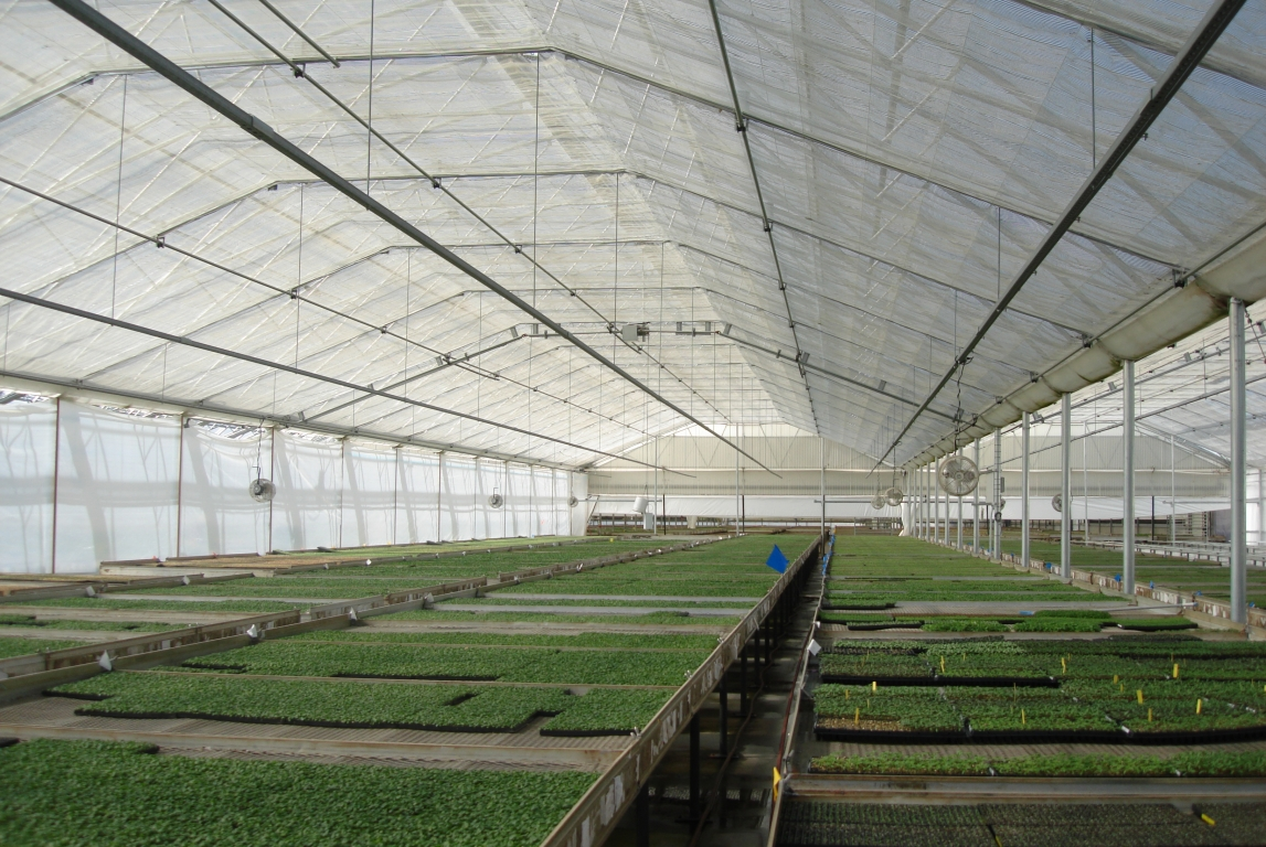 Energy Curtain | Commercial Greenhouse Accessories
