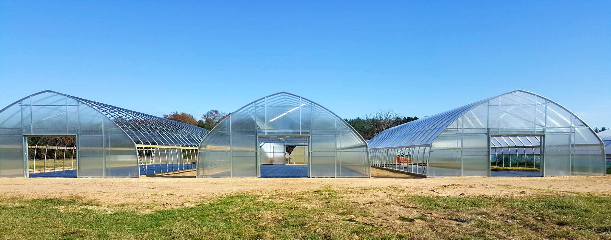 Prairie Nursery Grows Important Native Plants in its ATI Greenhouses | Commercial Greerhouse Manufacturer