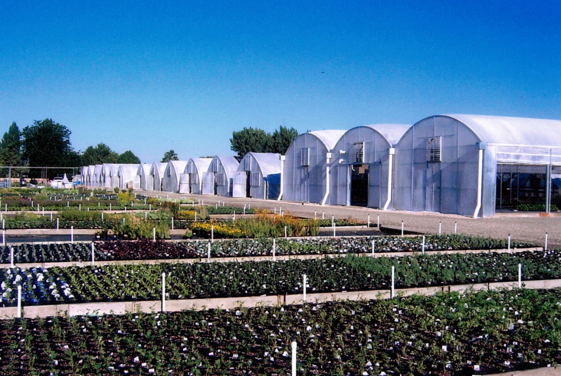 41,000 sq ft of growing space in Perennial Favorites | Perennial Favorites | Layton, UT
