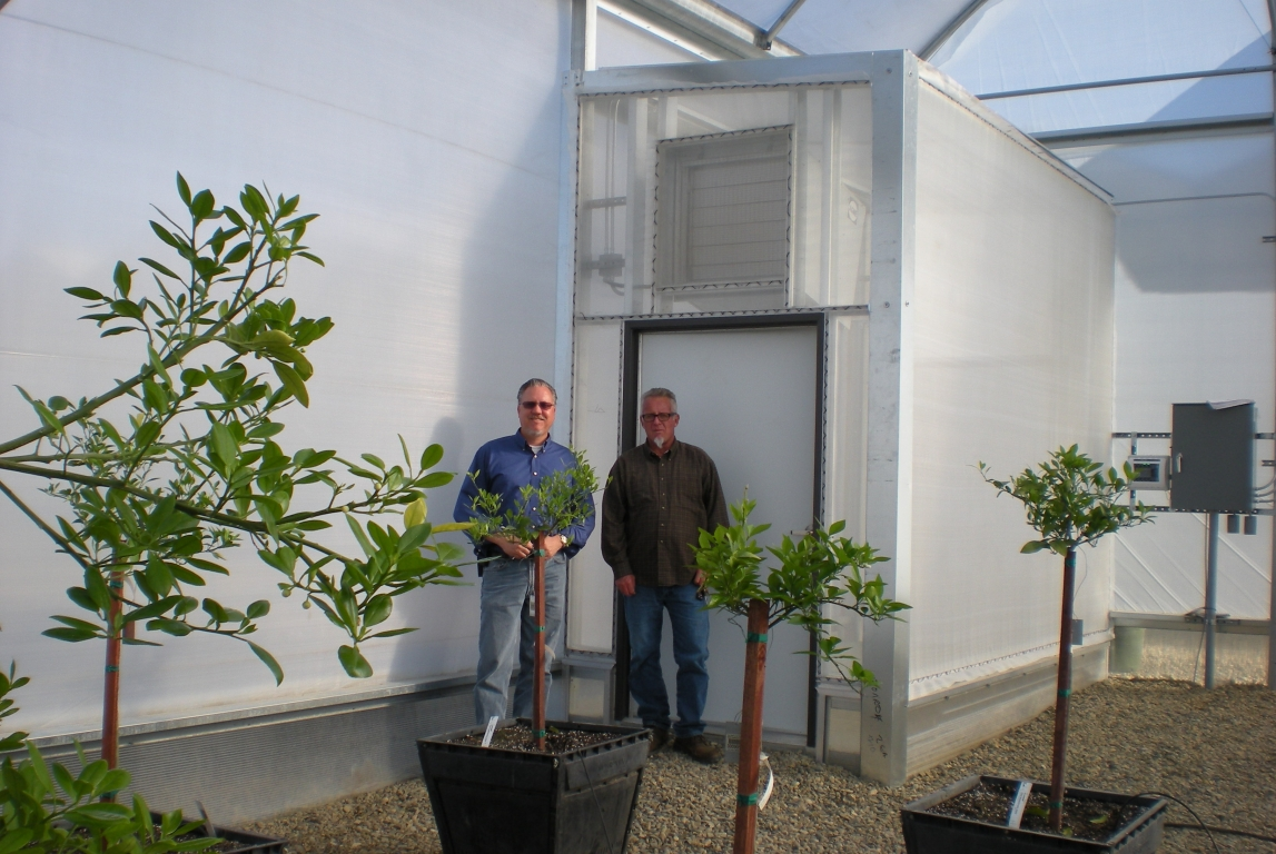 Insulator greenhouses for One-of-a-kind custom greenhouse at Monrovia Nurseries | Monrovia Nurseries | Woodlake, CA