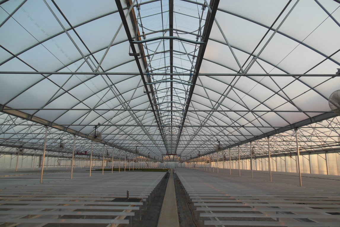 Commercial Greenhouse Continental | Agra Tech