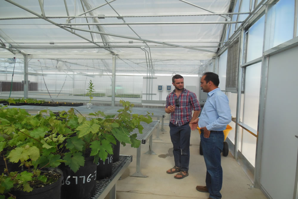 CSP Labs Tests the Seeds of the World | Agra Tech