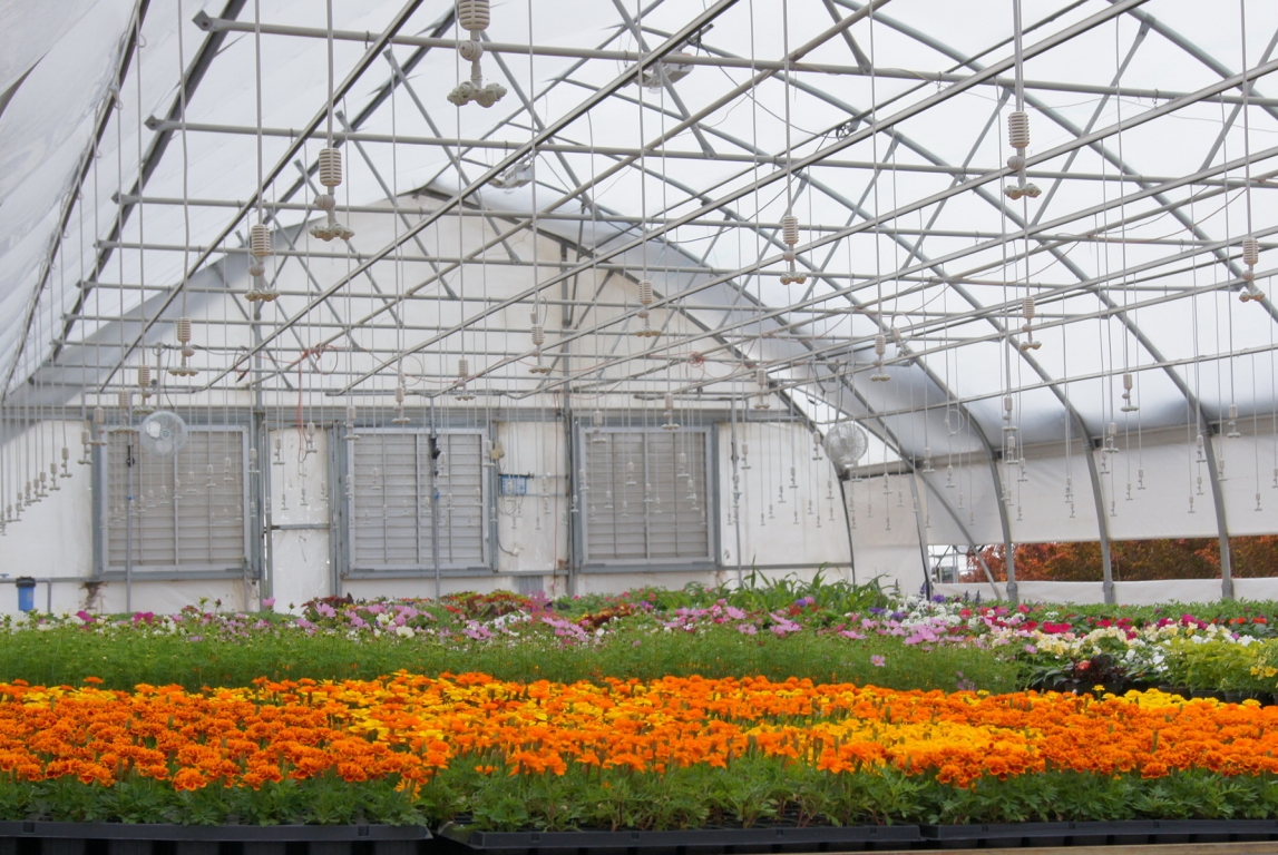 Our Neighbors Farm Uses an Agra Tech Greenhouse for Planting and Teaching | Commercial Greerhouse Manufacturer