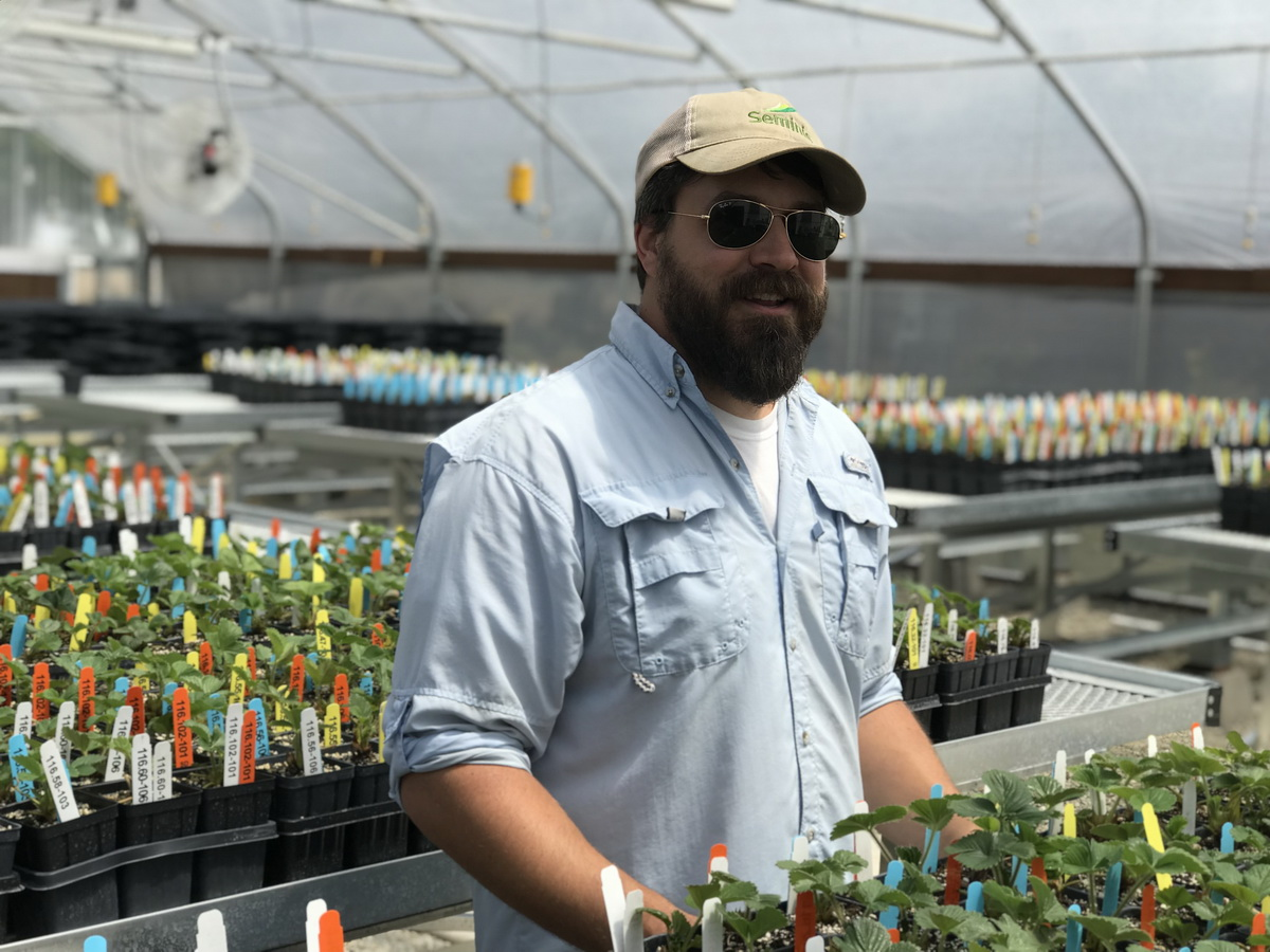 California Berry Cultivars Acquires Second Agra Tech Greenhouse | Commercial Greerhouse Manufacturer