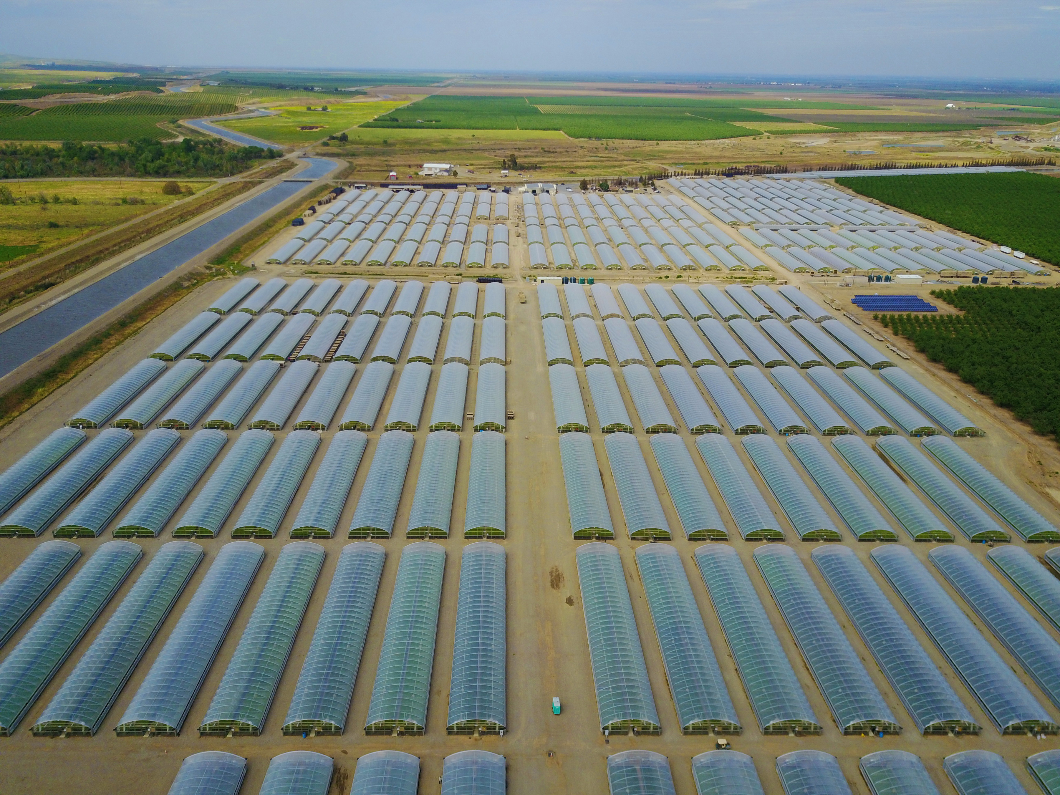 1.1 million sq ft of Agra Tech Thermolator greenhouses at Calif Transplants | Calif Transplants | Newman, CA