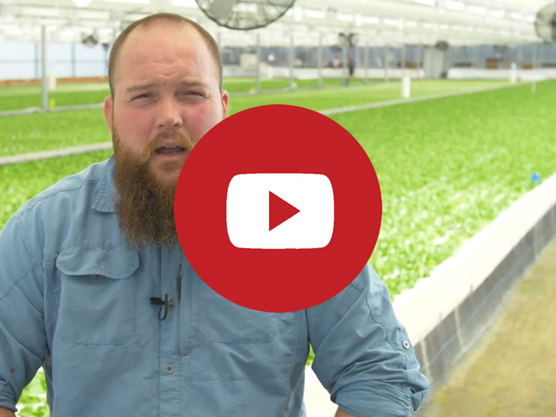 Fresh Farm Aquaponics | Commercial Greenhouse Manufacturer