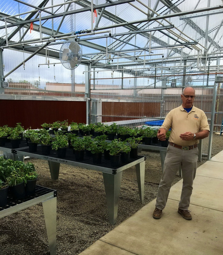 Erik Dyer in his new Solar Light Greenhouse